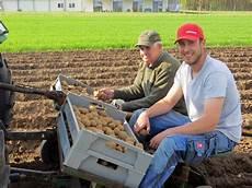 kartoffeln pflanzen im august die fr 252 hkartoffeln sind gelegt hofladen friedrich