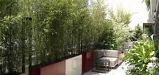 grande jardinière pour bambou bambou dans jardiniere pivoine etc