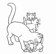 Katzenbabys Ausmalbilder Baby Cats Coloring Pages Animal Pictures