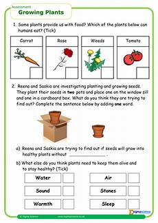 science plants ks1 worksheets 13580 ib growing plants by sigma1 teaching resources tes