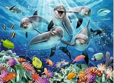 Malvorlagen Unterwasser Tiere Malen Delfine Im Korallenriff Delphine Puzzle Und Unterwasser