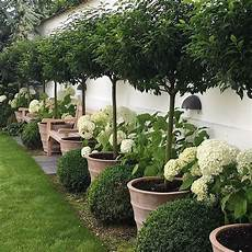 easy diy backyard landscaping a budget 09 onechitecture
