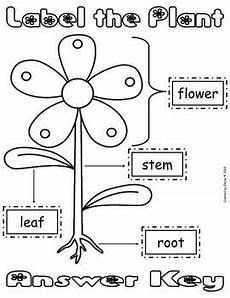 kinds of plants worksheets for kindergarten 13653 label the plant cut paste worksheet freebie by the treasured schoolhouse
