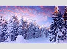 [71 ] Winter Wonderland Wallpapers on WallpaperSafari