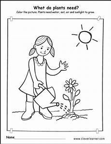 plants and soil worksheets 13633 what plants need to grow worksheets for preschools