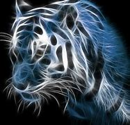 Image result for Cool Tiger Wallpapers