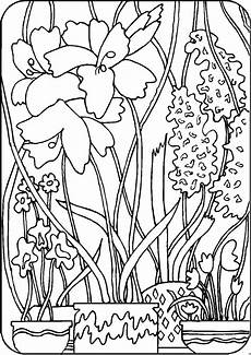 Malvorlagen Urwald Urwald Ausmalbild Malvorlage Blumen