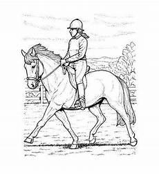 malbuch 32 malvorlagen quot pferde quot ausmalbilder als pdf