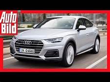 2019 Audi Q6  Cars Review