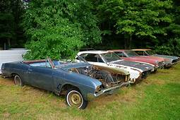 Buick Hoard One Man's Obsession With The1966