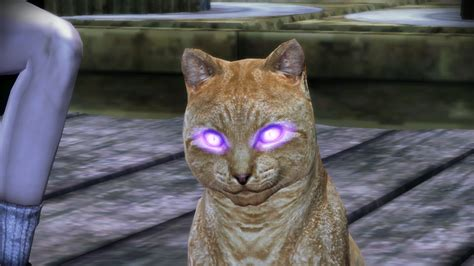The Sword Emperor's Video Game Blog