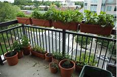 Apartment Patio Container Garden by Balcony Gardening Tips On Gardening In Patios For