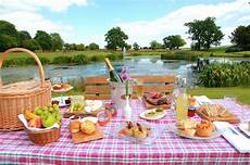 how to plan the picnic candis