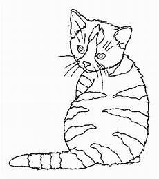 Ausmalbilder Katzen Ausmalbilder Katzen Malvorlage Gratis