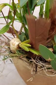pflanzen deko kreativ und selbstgemacht inspirierend diy