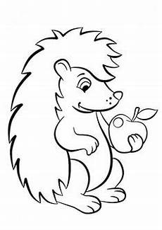 Igel Malvorlagen Resep Pin Hana Burešov 225 Auf Podzim Hedgehog