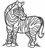 Zebra Coloring Page & Book For Kids