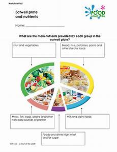 the eatwell plate healthy eating 6 worksheets by lauracollis teaching resources tes