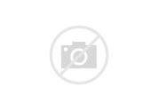 MORTAL KOMBAT LEGENDS: SCORPION'S REVENGE Official Trailer (NEW 2020) Animation HD