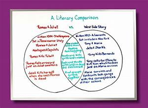 Venn Diagrams  Contrasts In Color