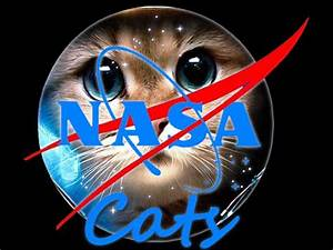 CATS Nasa Social Press Conference - YouTube