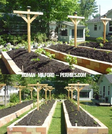 raised bed gardens can save you loads of 9 diy raised bed garden designs and ideas with a prep