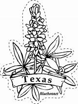 Texas Coloring State Flower Bluebonnet Pages Flowers Patio Drawings Clip Learning Line Drawing Revolution Printable Paintbrush Privacy Policy Indian Outline sketch template