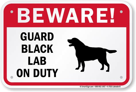 Guard Dog Black Labrador Sign, Beware Dog Sign, Guard Dog. Iron Signs. Carnival Party Signs Of Stroke. Striped Signs Of Stroke. Kidney Damage Signs Of Stroke. Suicidal Thought Signs. Movie Character Signs. Large Signs Of Stroke. Path Signs