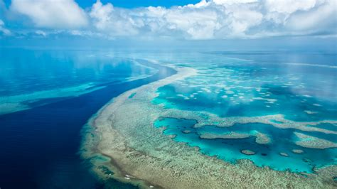 wallpaper microsoft surface hub great barrier reef