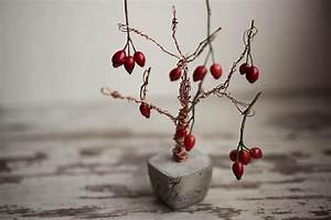 Baum Mit Roten Beeren : beton kupfer foto baum diy idee fotografie tipps und foto hacks ~ Markanthonyermac.com Haus und Dekorationen