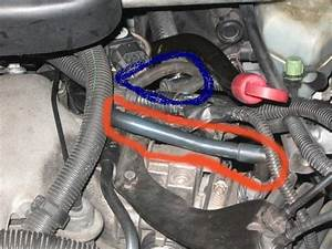 2000 Chevy Venture Vacuum Hose  Ok The Hose On The Red