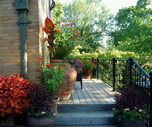 Modern Luxury Homes Beautiful Garden Designs Cool Pictures ...