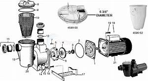 Waterco Supatuf Pump Parts