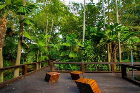 Landscape Ideas: Subtropical Garden | Penfold Projects Blog