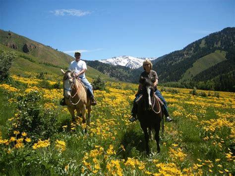 wyoming things horse ranch creek jackson corral ok horseback hole riding wy tripadvisor fun tour