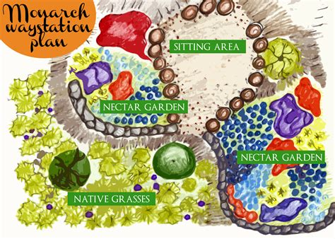 monarch butterfly garden design monarch butterfly waystation design project indiegogo