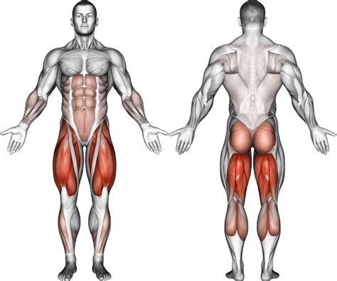 squat kettlebell snatch swing jump muscles deadlift swings clean zercher worked arm front vs side american squats body primary leg