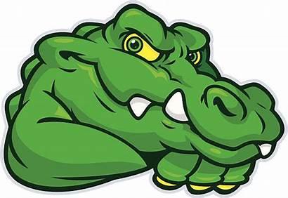 Gator Mascot Alligator Clipart Vector Young Illustrations