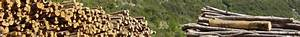 Bois De Chauffage Montpellier : marchand de bois de chauffage pr s de montpellier puech ~ Dailycaller-alerts.com Idées de Décoration