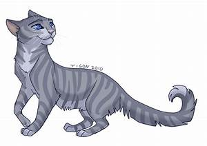 Feathertail by tigon on DeviantArt