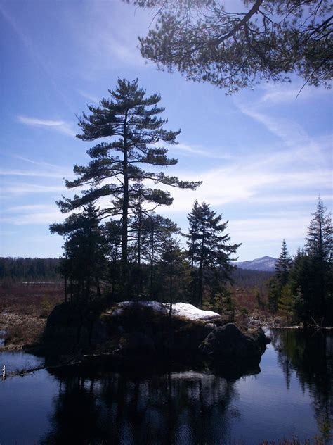 adirondack park agency visitor interpretive centers
