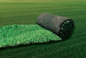 Rouleau Gazon Naturel : gazon en rouleau gazon en plaque et gazon naturel ~ Melissatoandfro.com Idées de Décoration