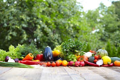 cours cuisine dijon cours de cuisine bio à dijon et en bourgogne atelier vegan