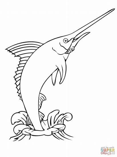 Marlin Jumping Water Coloring Fish Pages Drawing