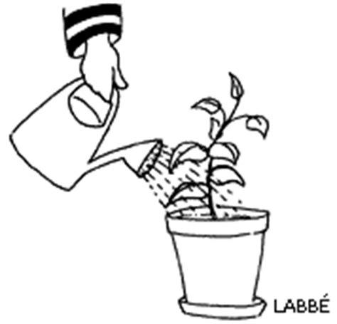 Pflanzen Automatisch Gießen by 4 2 Umtopfen Gartenbau Theorie