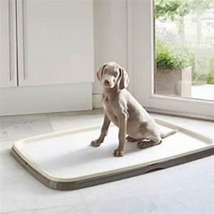 tapis educateur pour chiot tapis chiot puppy trainer xl With tapis éducateur chiot