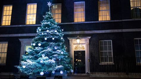 which christmas tree for downing street wales itv news