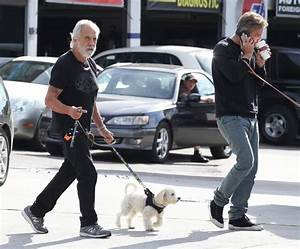 Paris Chong in Tommy Chong Walks His Dog in Brentwood - Zimbio