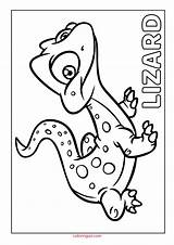 Lizard Coloring Printable Pdf sketch template