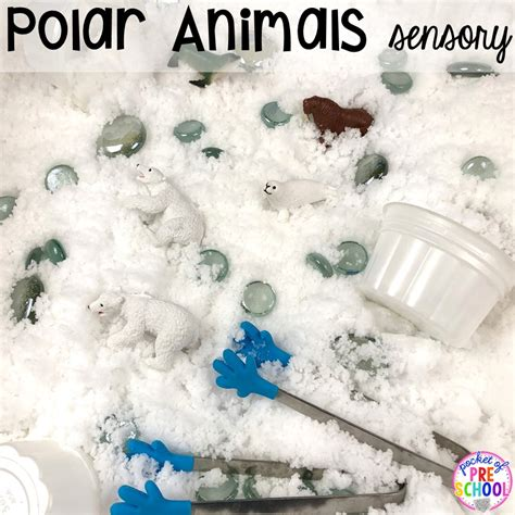 polar animal themed activities and centers pocket of 502 | Slide15